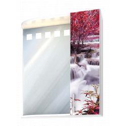 Шкаф-зеркало фотопечать 60 свет   П-10
